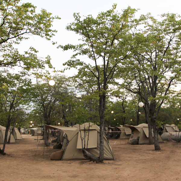 00 - camp
